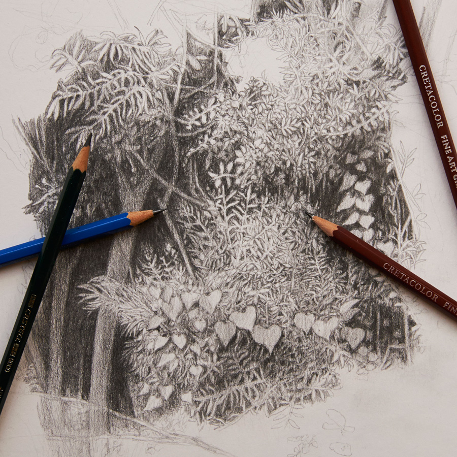 Cursos de dibujo